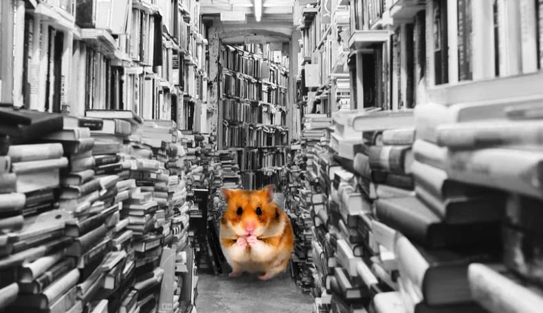 Bücherhamstern